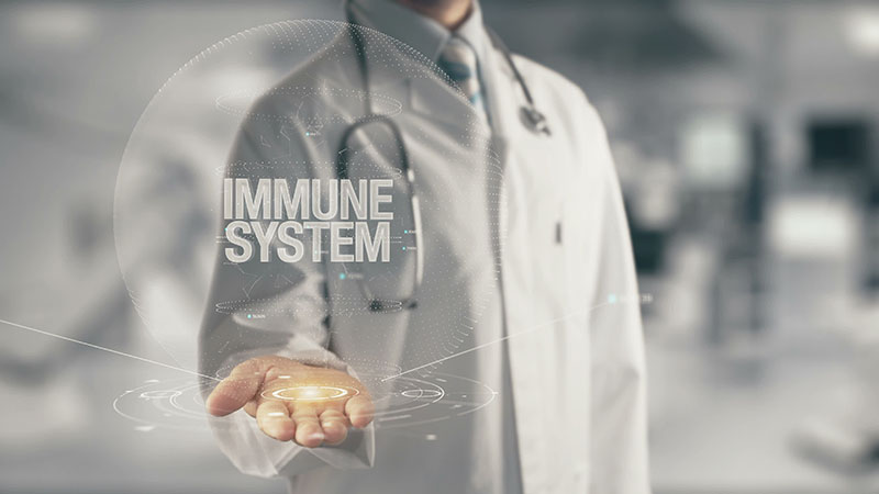 Immunopathologie